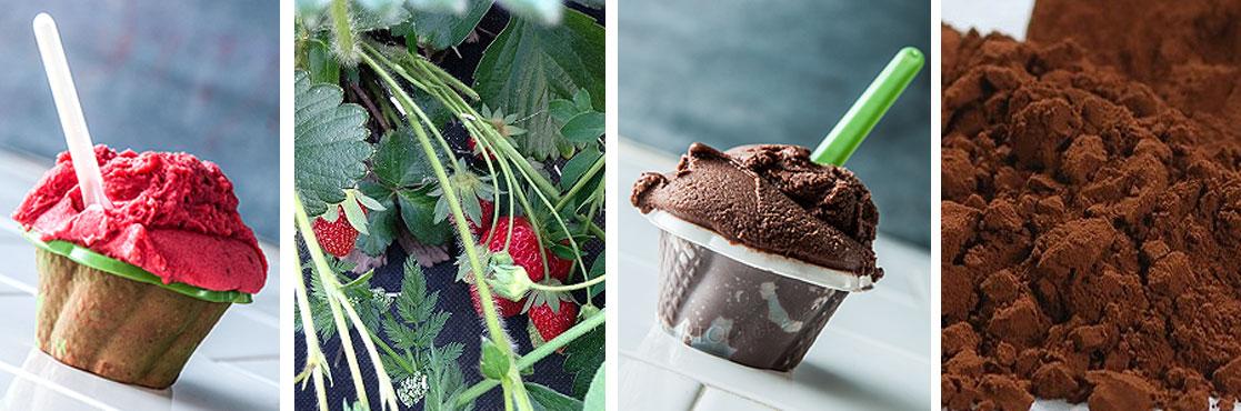 Stefino il gelato biologico buono per davvero. Gelaterie a Bologna e Roma. Il gelato bio tradizionale e vegan.